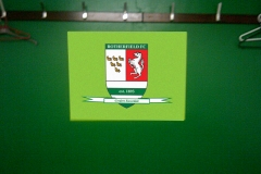 Rotherfield RFC